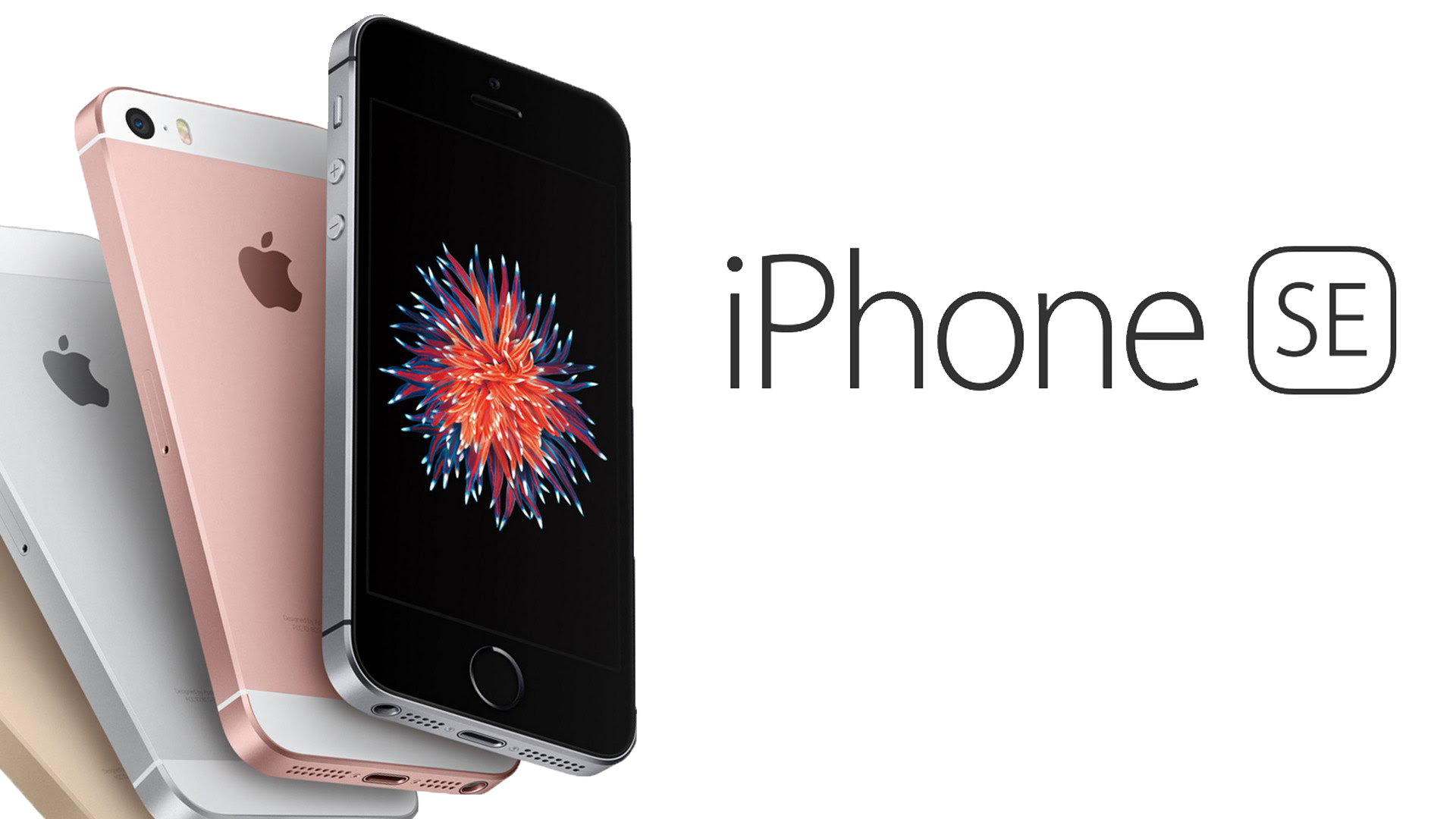 5-in-the-Best-Smartphones-of-2016-List-iPhone-SE