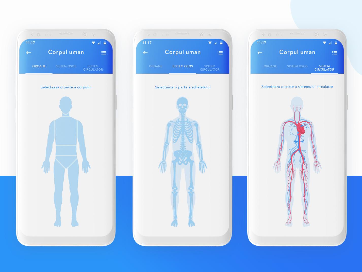 Human Body Representation